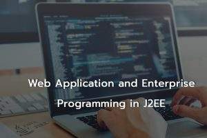 Web Application and Enterprise Programming in J2EE