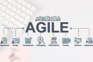 Online: Agile Mindset and Scrum Process 3
